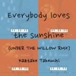 Everybody loves the sunshine RMX